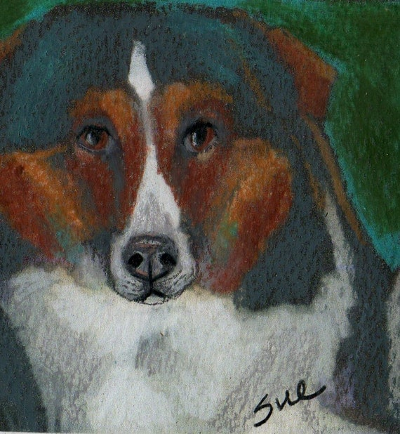 original art aceo card drawing tri color collie dog