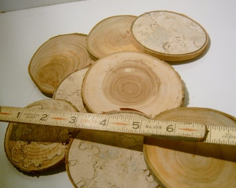 20 Large Assorted  Blank Tree Branch Slices 3 inch Coaster Size