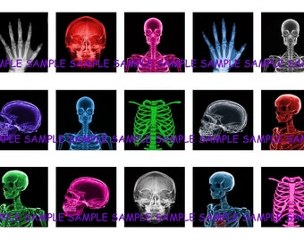 INSTANT DOWNLOAD...Xray Skeletons...1 Inch Square Images Collage Sheet for Glass Pendants ...Buy 3 get 1