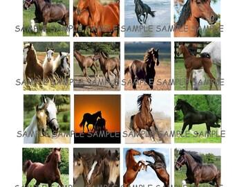 INSTANT DOWNLOAD...Horses... Images Collage Sheet for Scrabble Tile Pendants ...Buy 3 get 1