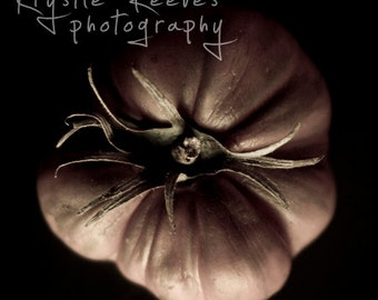 Heirloom Tomato - 8x8 Fine Art Photograph