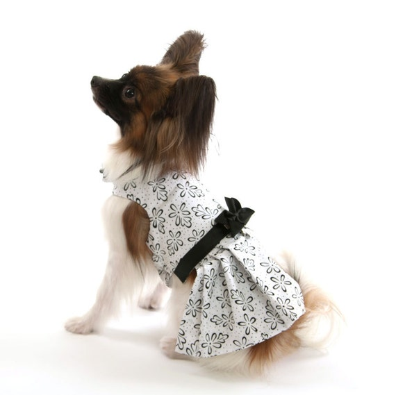 White Dog Dress with Black Flowers