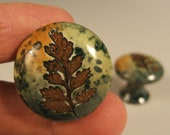 2 small Fern  ceramic cabinet knobs/drawer pulls in green leaf glaze