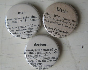 My Little Firebug Vintage Dictionary Magnet Set of 3