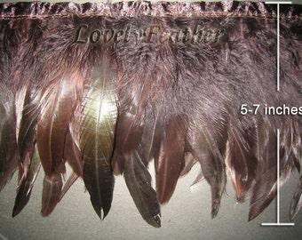 Coque feather fringe of dark brown irridescent 1 feet trim