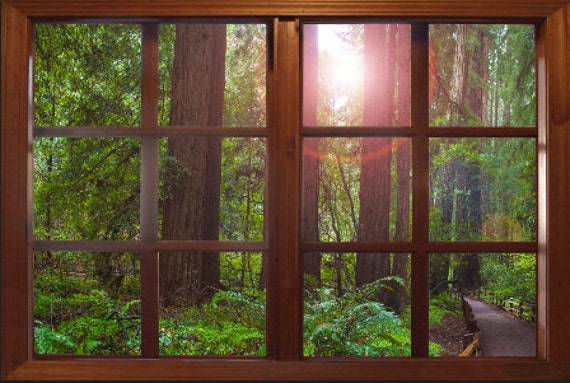 Wall Mural Window Self Adhesive Forest Window View-3 Sizes