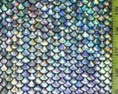 Silver Small Fish Scale Lycra Fabric