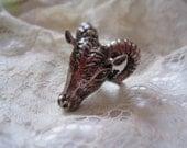 Taurus Bull Ring