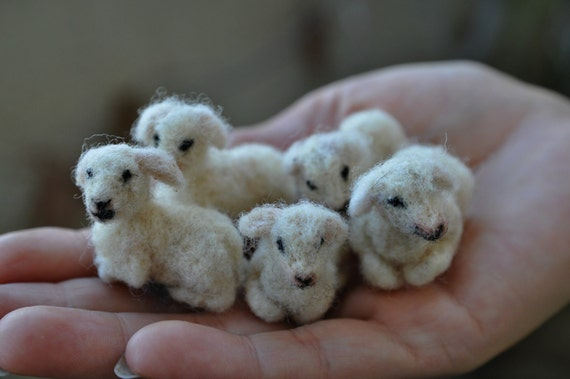 Needle felted animal, Tiny lamb, Needle felt animals, Felted lamb,  For custom orders