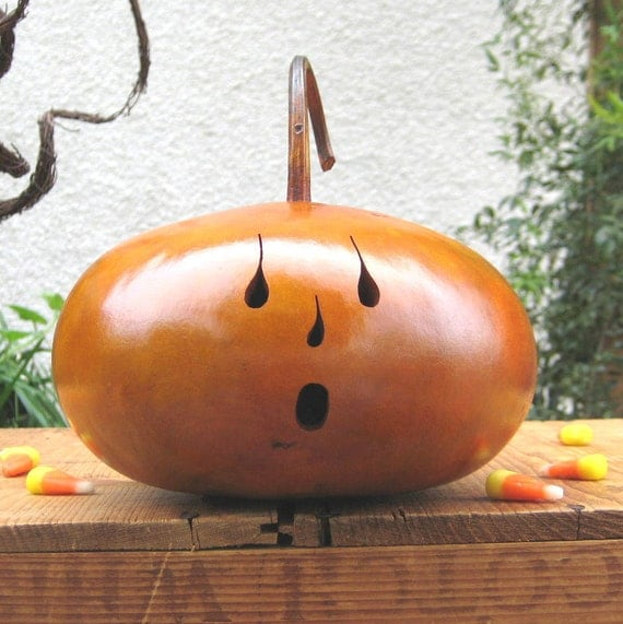 Halloween Gourd Jack O Lantern Natural Fall Harvest Spooky Pumpkin Decoration