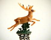 sale - Deer Spirit. Woods collection. shapeshifter ring. Miniature curio cabinet by KarolinFelix
