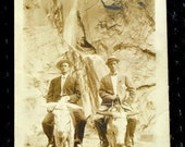 Men Pack Mules Wilderness Antique Photo Postcard, Real Photo Vintage Postcard