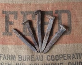 5 Old Rough and Rustic Railroad Spikes