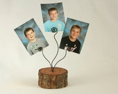 Rustic Wooden Tree Branch Picture/Photo/Card Holder Stand