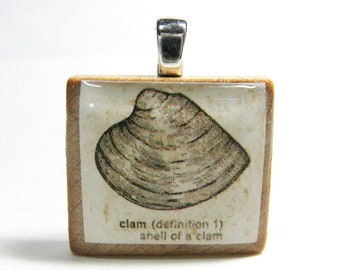 Clam shell drawing - vintage dictionary Scrabble tile pendant