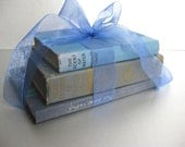 Vintage Book Bundle, Shabby and Chic, Cottage Chic, French Country, Old Books, Office Decor, Blue