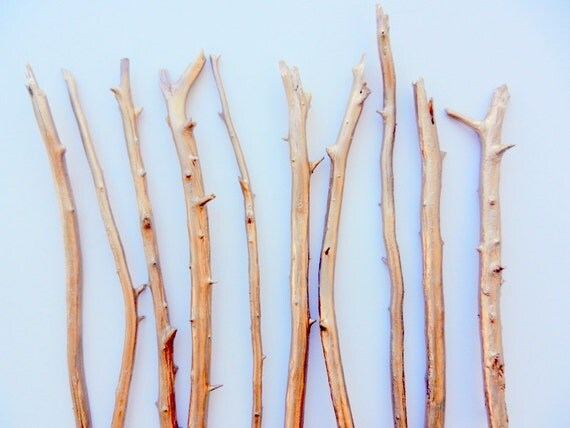 Gold Branches / Painted branches for vase / wooden branches