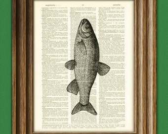 Fish Art Print Chub Fish illustration beautifully upcycled dictionary page book art print altered