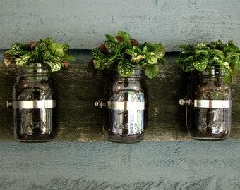 Mason Jar Wall Planter / Organizer Decor