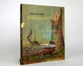 The Dead Tree by Alvin Tresselt 1972 - OopseeDaisies