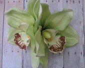 Hawaiian Lime Green Two Orchids hair flower clip