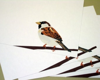 Male House Sparrow A2 Notecards