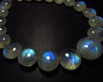 AAA - Gorgeous High Quality Rainbow MOONSTONE - Smooth Polished Coin Shape Briolett Full Blue Flashy Fire Huge Size - 7.5 - 11 mm - 21 pcs