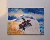Sea Turtles Watercolor Print Collage ACEO Baby sea turtles, 252 turtle print, ACEO handmade watercolor print