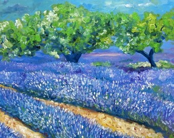 Lavenderfields in the Provence