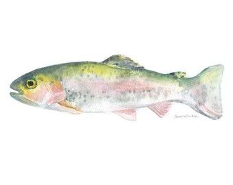 Rainbow Trout Watercolor Print - 10 x 8 / 11 x 8.5 - Fishing Art - Fisherman Painting - Fish
