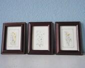 SALE:  Vintage Floral Watercolor Prints in Wood Frames