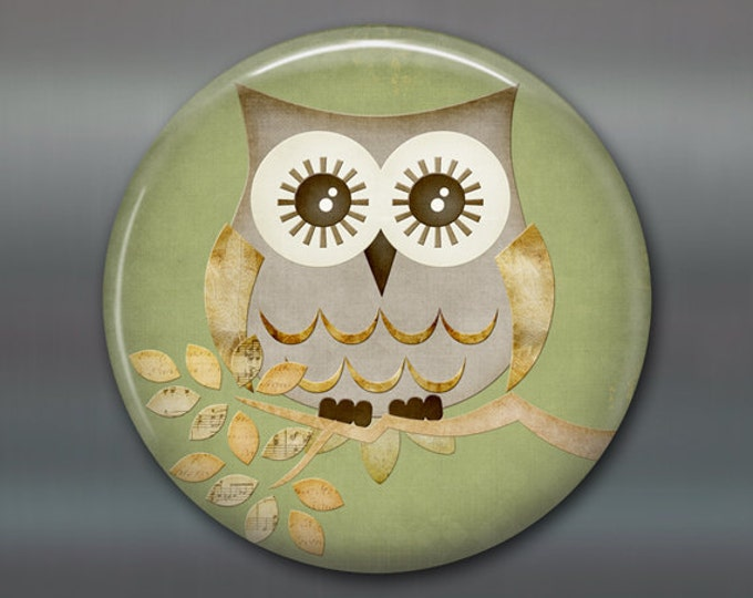 "3.5"" cute owl fridge magnet, owl decor, kitchen decor, large fridge magnet, stocking stuffer  for fridge MA-120"