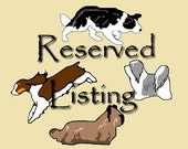 Reserved Listing for springerfinn, 1 dog crate tag - ask me how to get your own reserved listing