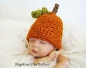 My Little Pumpkin Crocheted Baby Hat