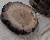 Natural Oak wood Coasters ... set of 6