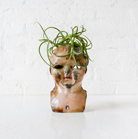 RESERVED - 10% SALE - Antique German Doll Head Air Plant Garden - Creepy Grow Burn Baby