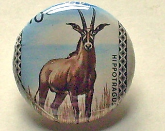 Congo Roan Antelope 1inch Button Vintage Postage Stamp