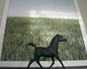 The Original Chalkboard Horse - Chaff