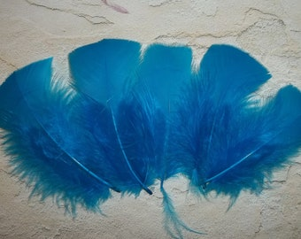 Turquoise turkey flat feathers, craft supplies, DIY, bridal wedding hair clips, dark blue feathers