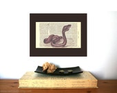 Red Cobra Snake Vintage Art Print Print on Antique 1896 Dictionary Book Page