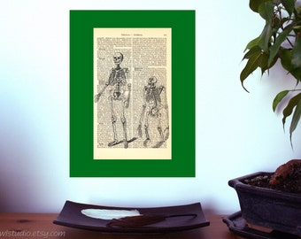 Human and Gorilla Skeleton Vintage Art Print on Antique 1896 Dictionary Book Page
