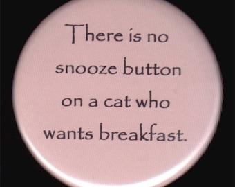 Cats Lack A Snooze Button