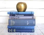 Small Blue Books Instant Library Collection Decorative Vintage Book Bundle Photography Props Black