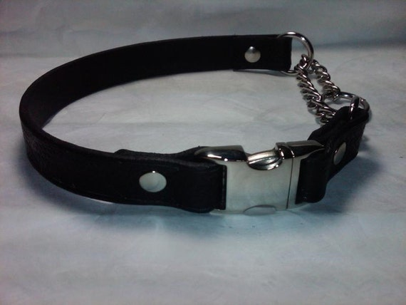 Leather Martingale Dog Collar with Side Release Snap Buckle - Medium Width