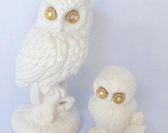 Two white owls