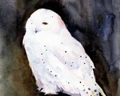 SNOWY OWL Watercolor Bird Print by Dean Crouser