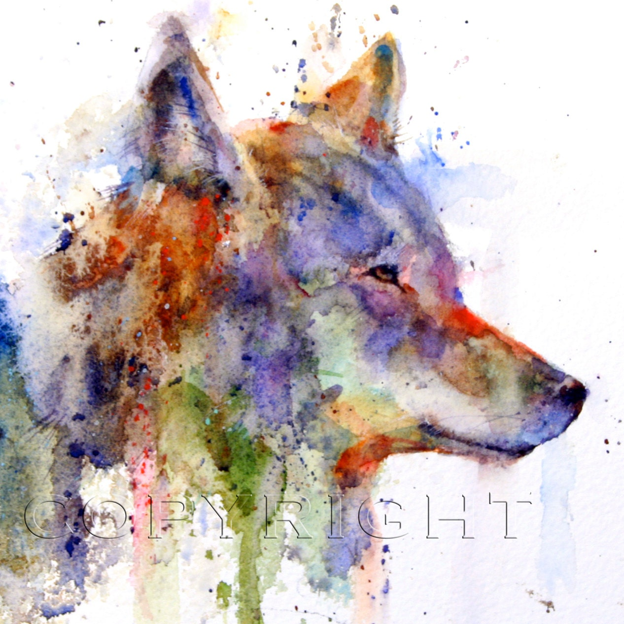 COYOTE Watercolor Prin... Colorful Lion Paintings