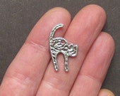 10 Cat Charms Antique  Silver Tone 2 Sided - SC1461