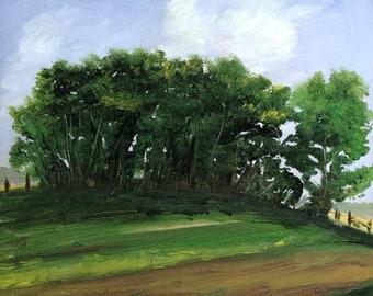 Landscape, The Grove,  Fine Art Limited Edition Print
