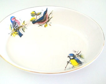 1970s Rare Pfaltzgraff Decorated Song Bird Pattern Casserole Dish